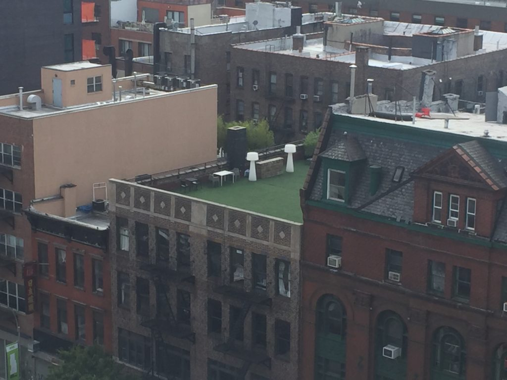 Photo of an AstroTurf roof in NYC.